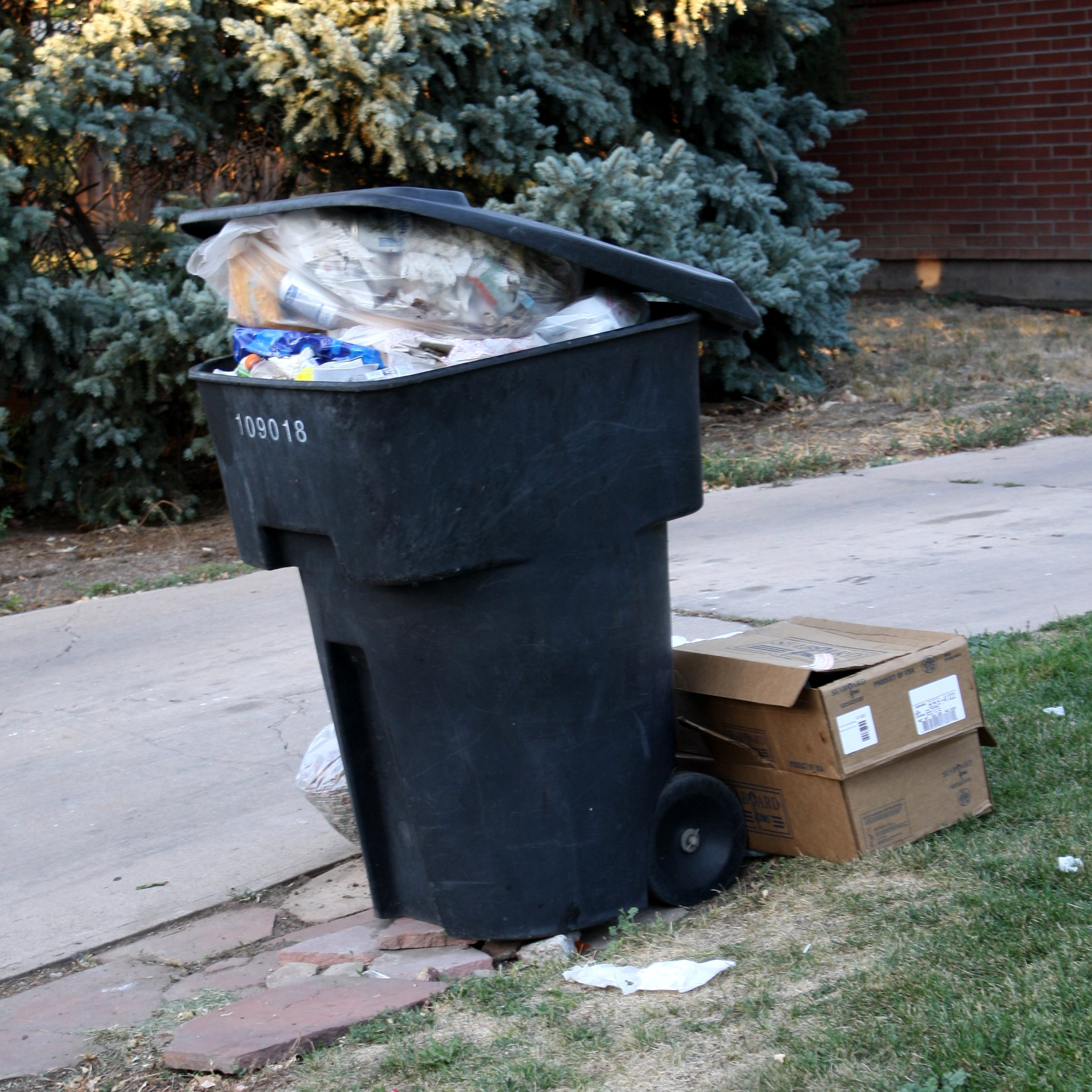 garbage with an S.jpg