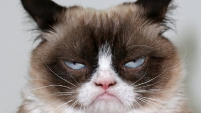 grumpy.jpg